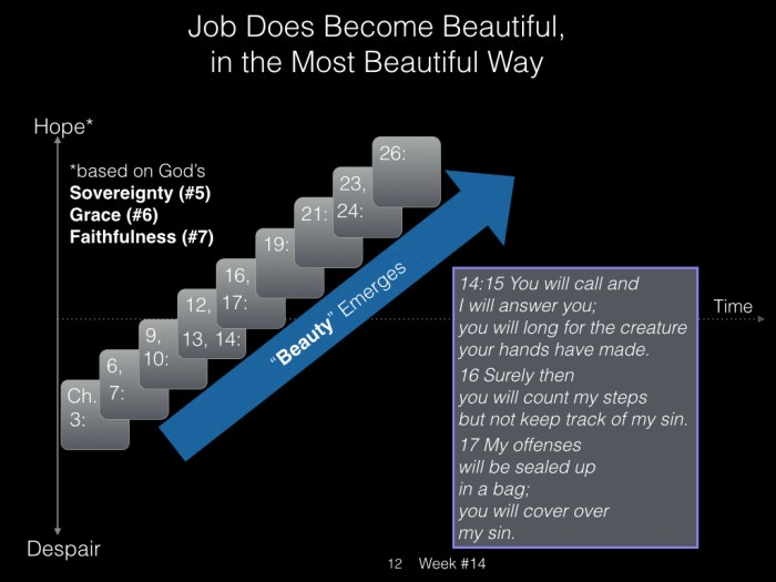 Book of Job, Week #14 LB.012