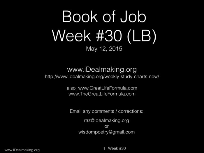 Book of Job, Week #30 LB.001