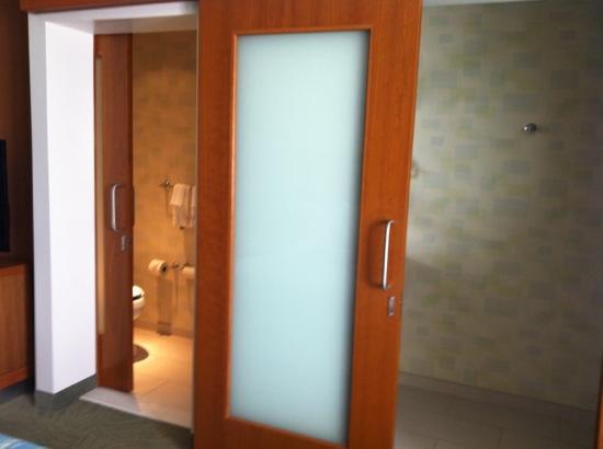 Things To Consider When Choosing A Bathroom Door Ideas 4