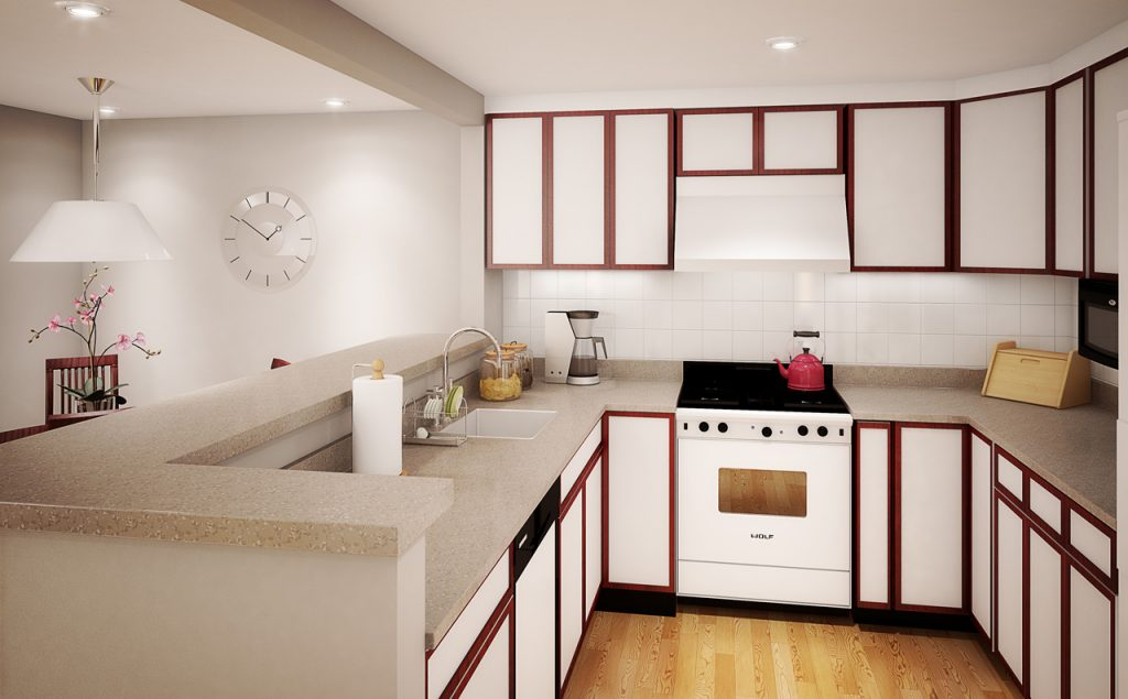Savvy Small Apartment Kitchen Design Layout for Perfect Kitchen with Great Efficiency  Ideas 4