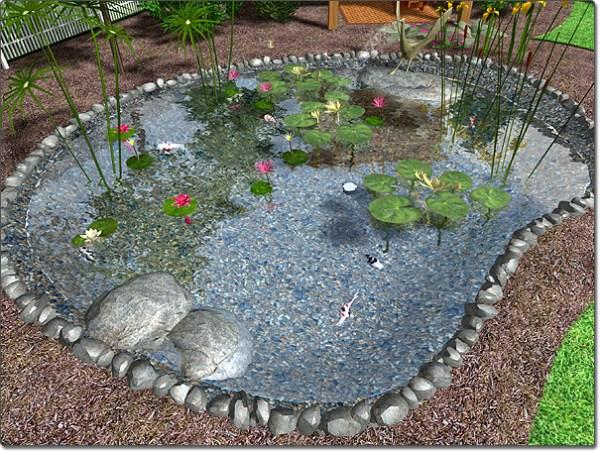 adding pond