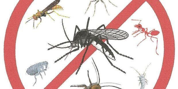 Repelentemosquitosheader
