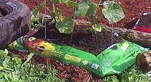 topsoil-garden