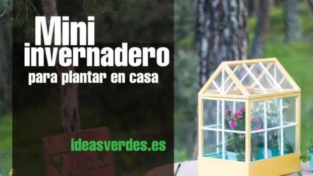 Haz tu propio invernadero para sembrar en casa ideas verdes for Invernadero en casa