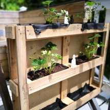 Shipping Diy Pallet Planters Ideas With Pallets