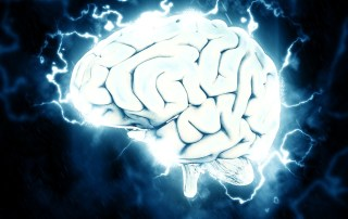 what proportion of our brain do we use