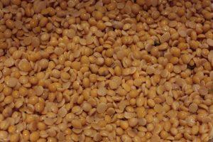 Graine de soja jaune