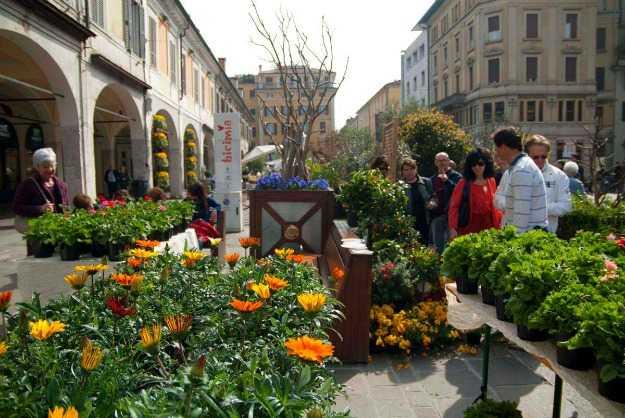 Giardinaggio Brescia E Provincia