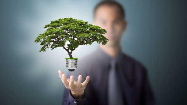 Energia pulita per aziende e famiglie  Idee Green