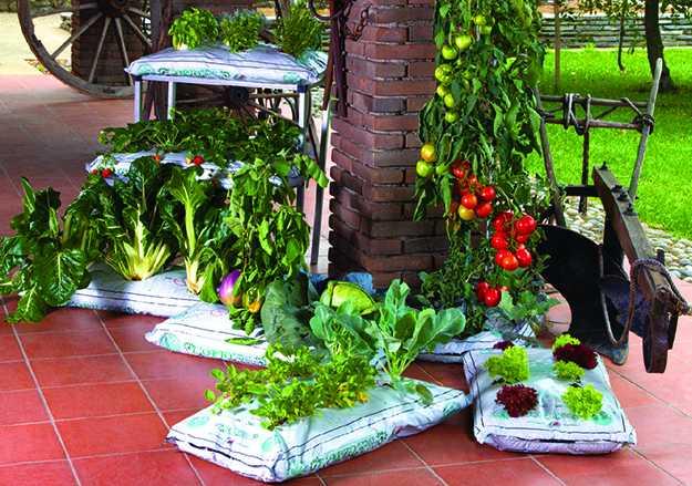 Giardinaggio Da Balcone