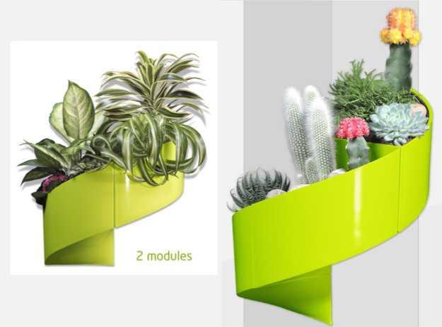 Come realizzare una parete vegetale  Idee Green