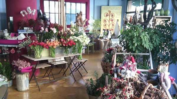 Ristorante serra tra fiori e piante con gusto  Idee Green