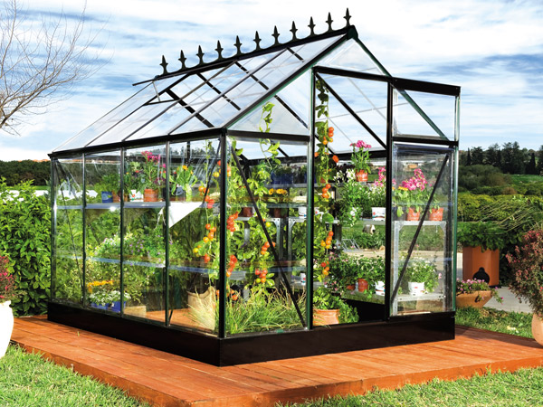 Serra per piante e fiori  Idee Green