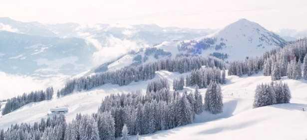 Frasi sulla neve  Idee Green