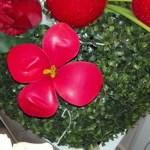 fiore con palloncino gonfiabile rosso
