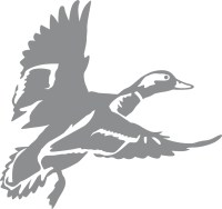 Landing Zone 3 Duck Wall Decal