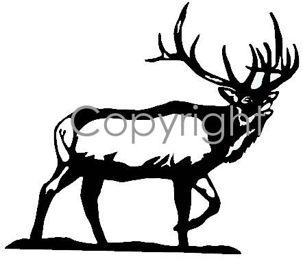 Buglin' Bull Decal