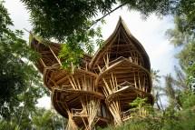 Bali Bamboo Tree House