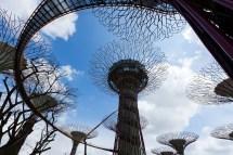 Spectacular Gardens Bay In Singapore Idesignarch