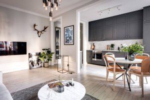 Small Apartment with Well Planned Layout and Luxurious ...