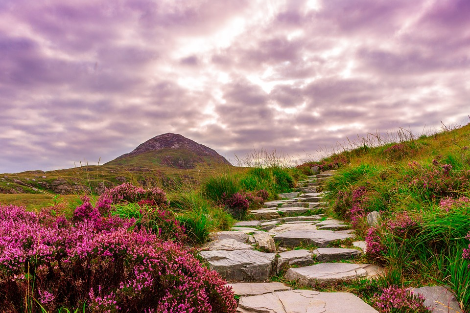 Estudiar inglés en Irlanda el exitoso sistema educativo irlandés