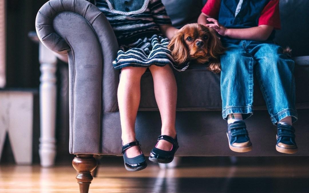 Inglés para niños en Valladolid: 10 consejos para ayudarles también en casa