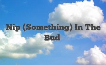 Nip (Something) In The Bud
