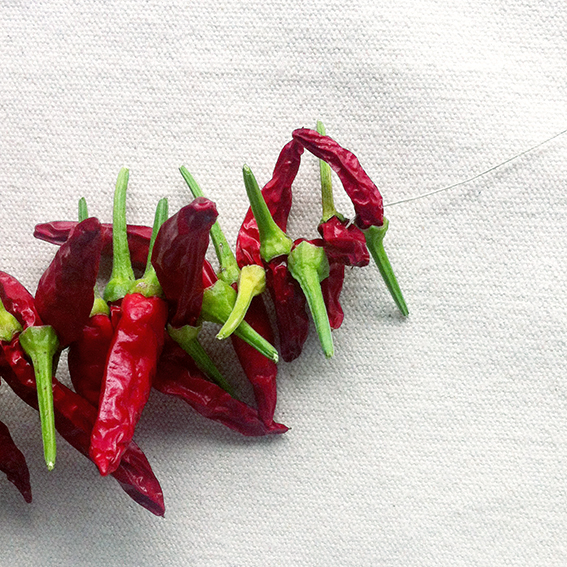 chillies string