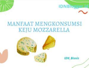Manfaat mengkonsumsi Keju Mozzarella
