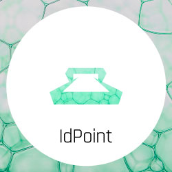 icons-software-frontpage-idpoint