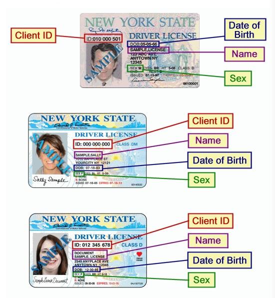 在線報名   新起點駕駛學校   紐約駕校,紐約駕照,紐約學車,紐約路考,美國駕照,美國駕駛執照