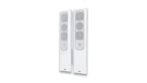 Sistema de Audio SMART SBA-100