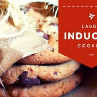Labor-Inducing cookies at www.idyllicpursuit.com