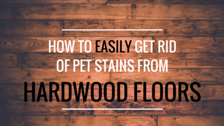 How to easily get rid of pet stains from hardwood floors