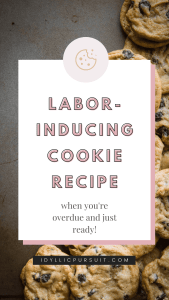 Labor Inducing Cookie Recipe