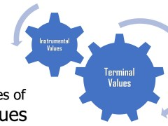 2 Types of Values (Explained)
