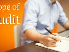 Scope of Audit