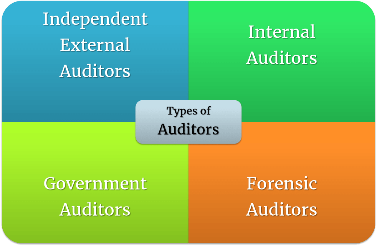 Types of Auditors