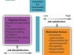 Two-Factor Theory of Motivation - Hygiene and Motivational Factor