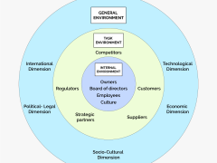 Internal and External Environment Factors that Influences Organizational Decision Making