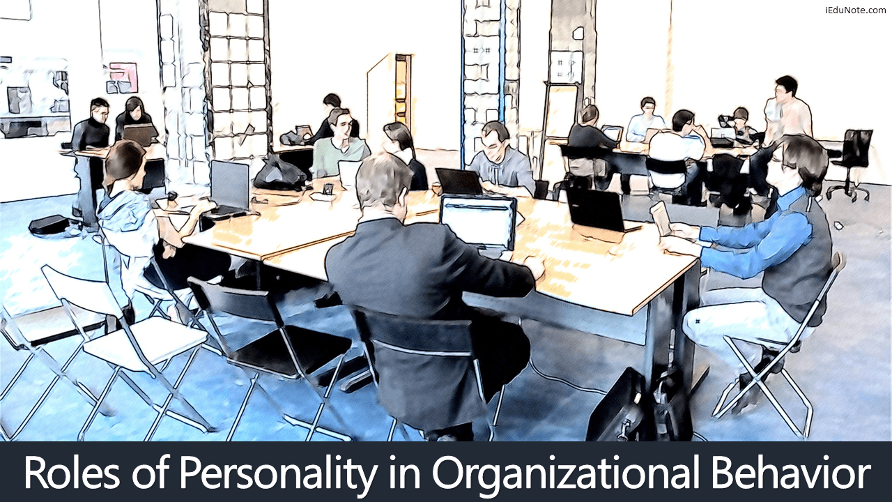 Roles of Personality in Organizational Behavior