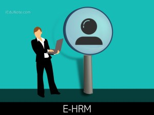E-HRM Practices