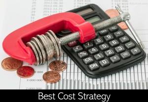 Best Cost Strategy: Definition, Examples