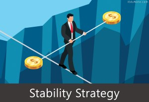 Stability Strategy: Pathways to Stability Strategy