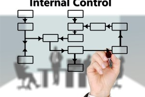 Internal Control: Definition, Types, Principles, Components