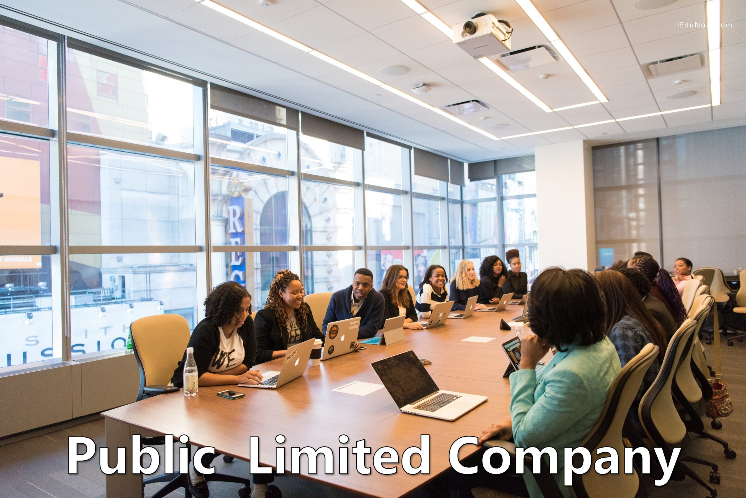 Image result for A Public Limited Company?