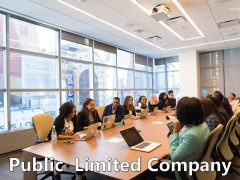 Public Limited Company: Definition, Features, Advantages, Disadvantages