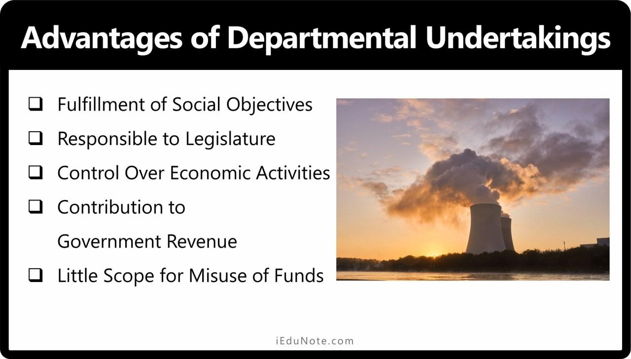 Advantages of Departmental Undertakings