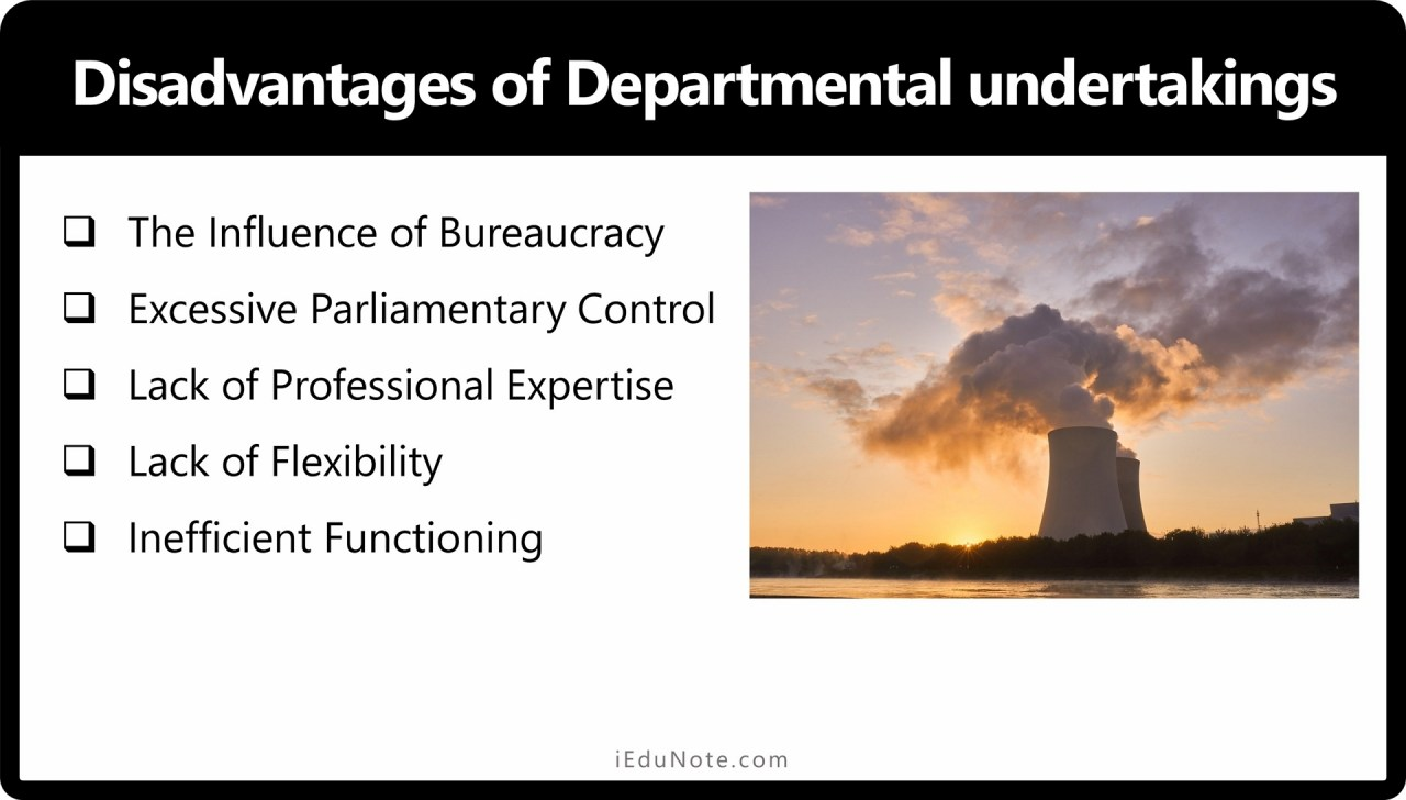 Disadvantages of Departmental undertakings