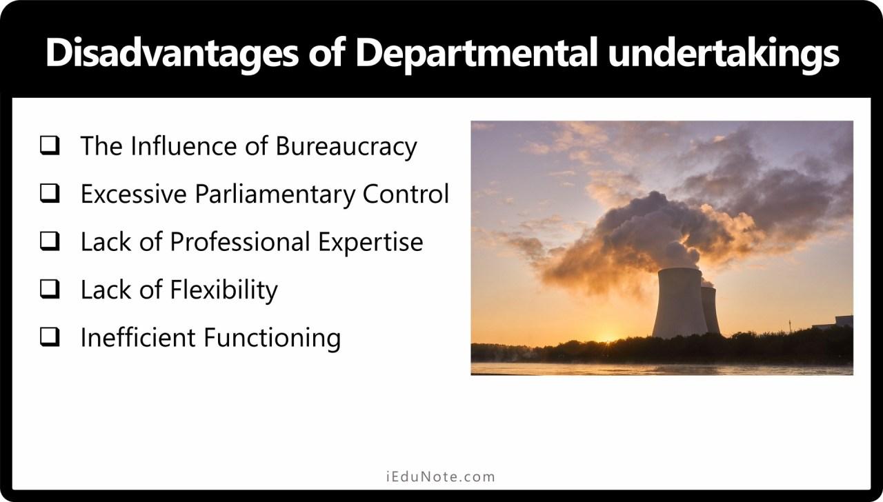 Disadvantages of Departmental undertakings